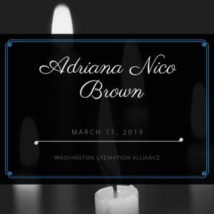 Adriana N. Brown